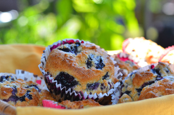 yoghurt Blueberry Muffins